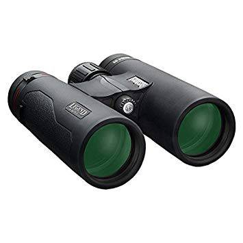 Bushnell 10x42 Legend L-Series Black